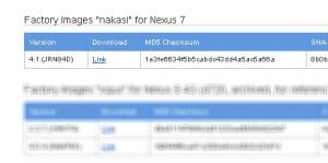 nexus-7-nakasi