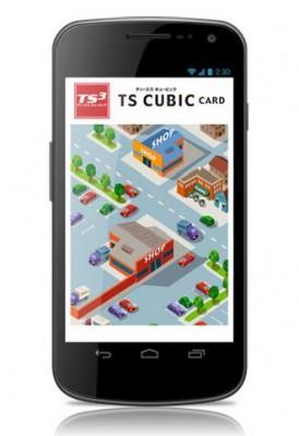 TS-CUBIC